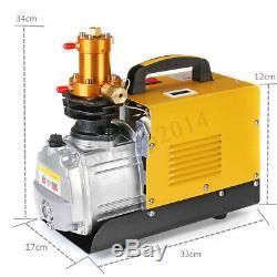 40MPa Air Compressor Pump 110V/220V PCP Electric 4500PSI High Pressure Diving